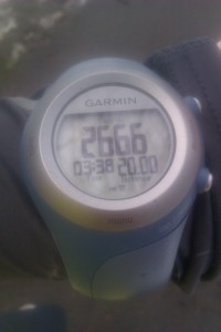 20 miler