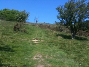first hill