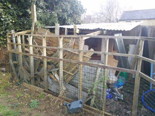 Wood shed wood