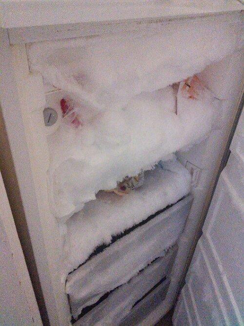 Frosty freezer