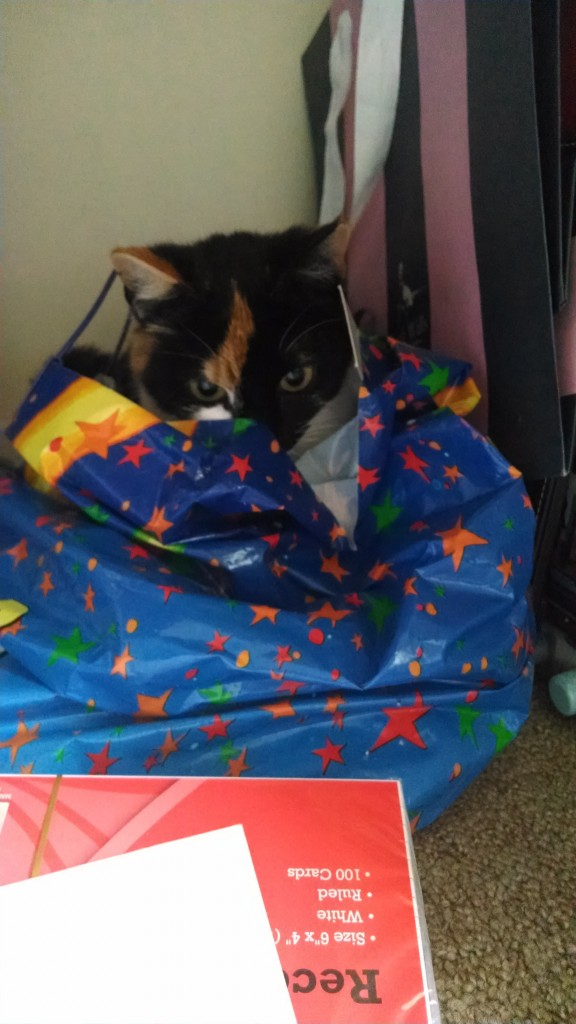 Bella in a bag