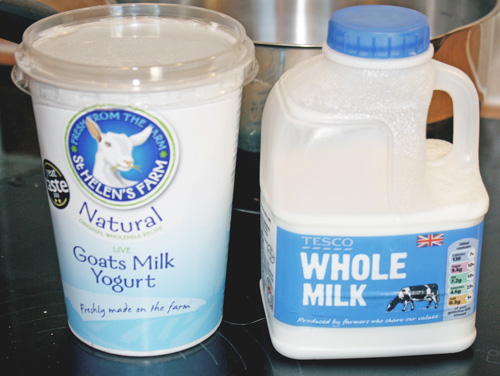 Goat's yoghurt and milk