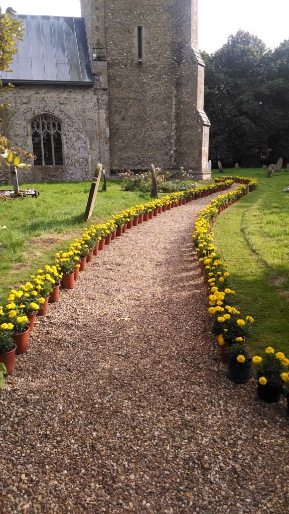 A path of yellow marigolds at the church for the wedding