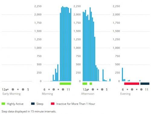 Garmin Vivofit step count