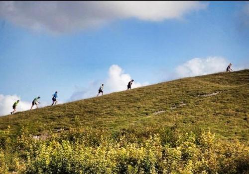 Royston harvest trail half hill