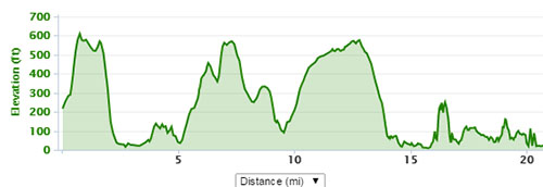 Gower marathon elevation
