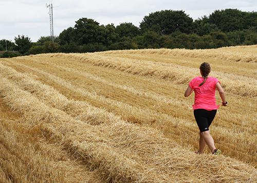 Running across the stubble