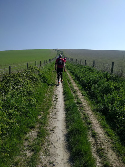 South Downs Way 50 mile 12