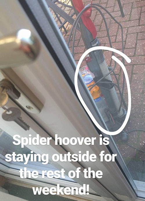 Spider hoover stays outside!