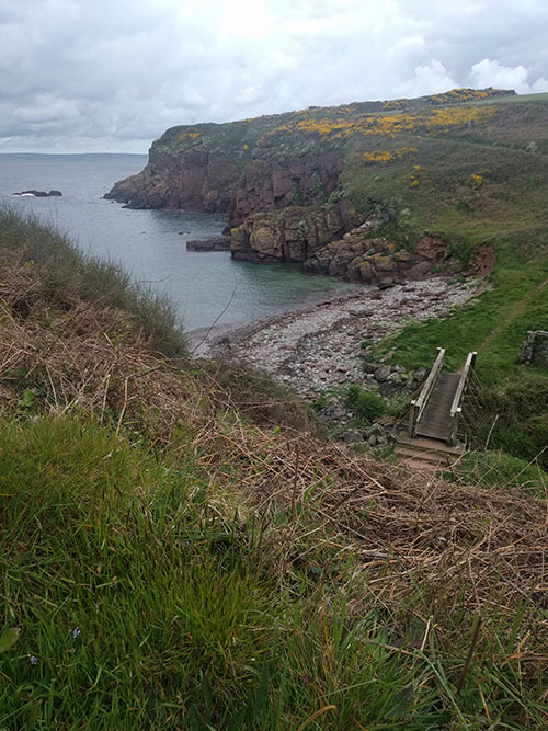 Pembrokeshire marathon