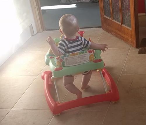 Oscar in his walker