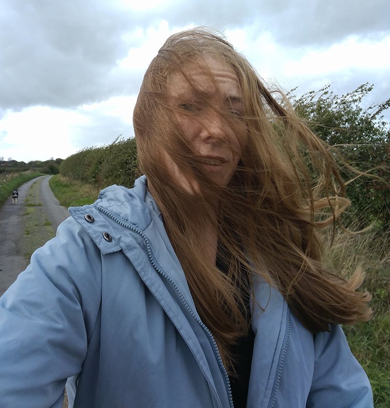 Windy dog walk