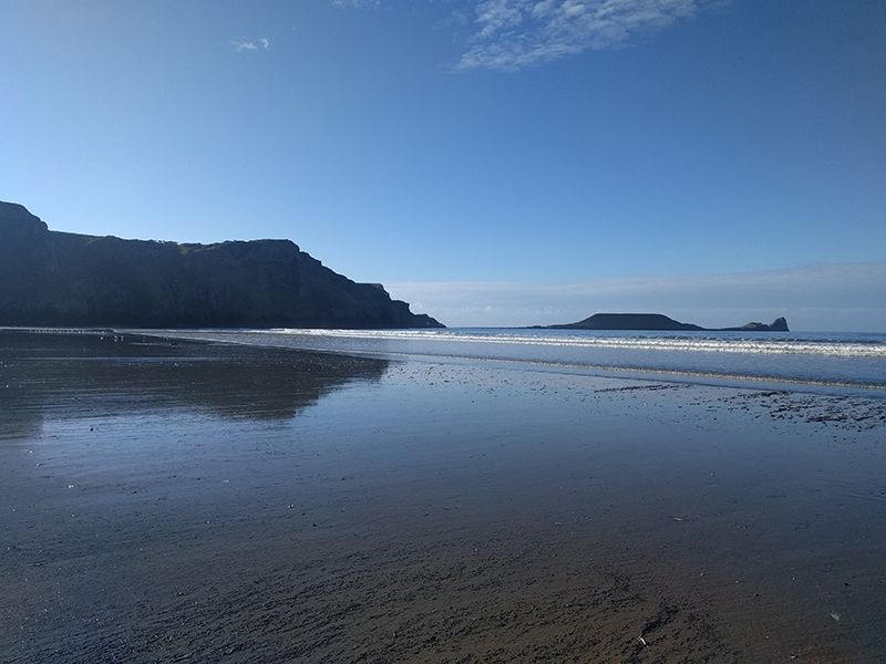 Gower beach