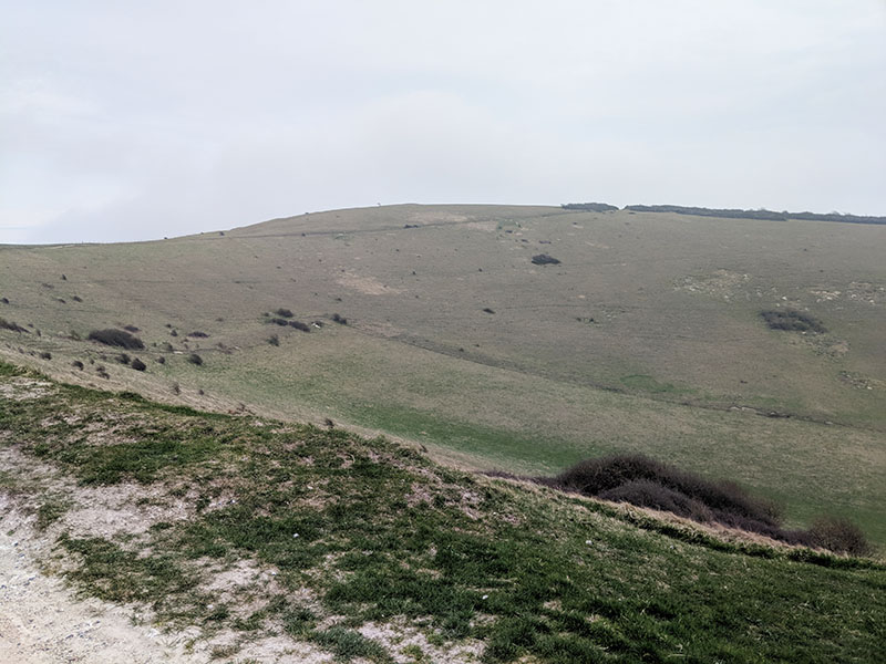 South Downs Way 50