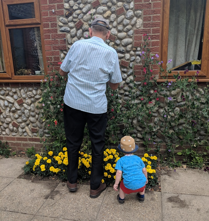 Oscar and Grandad deheading the flowers