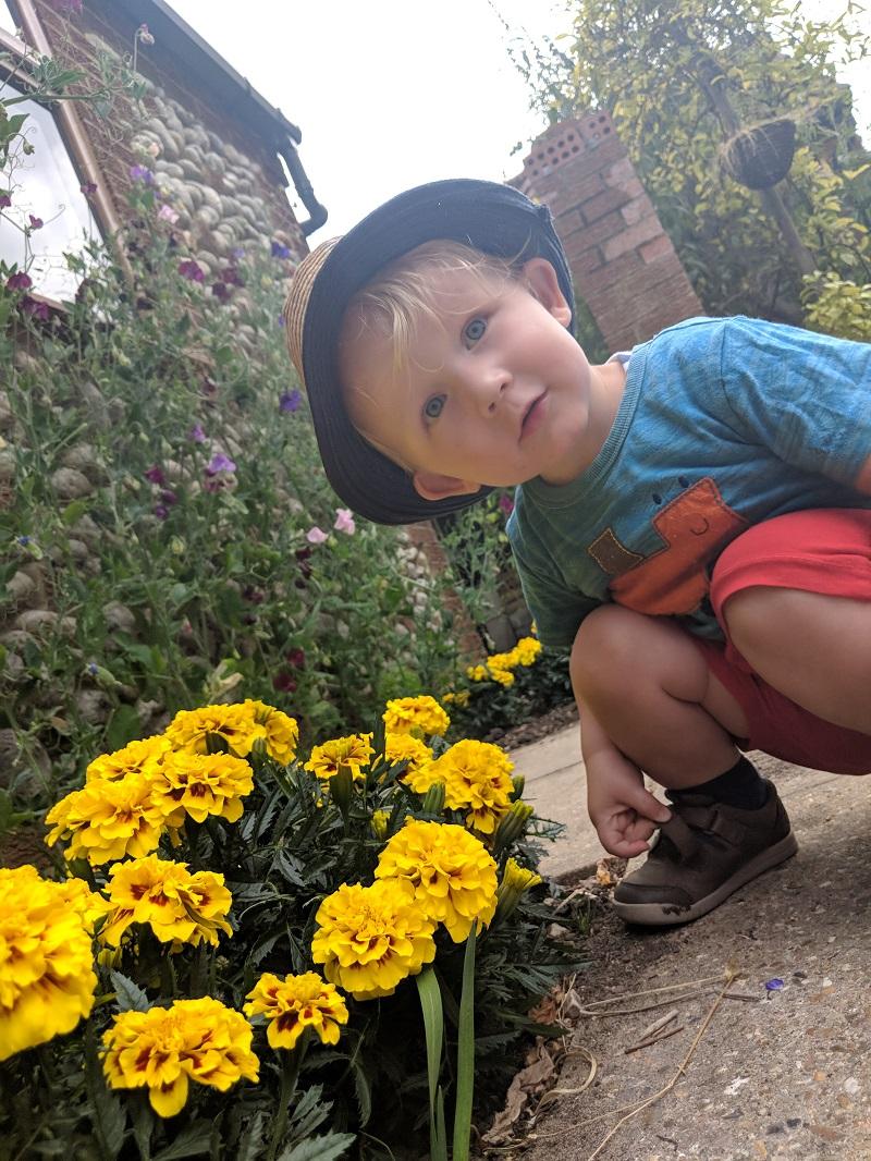 Oscar in the flowers