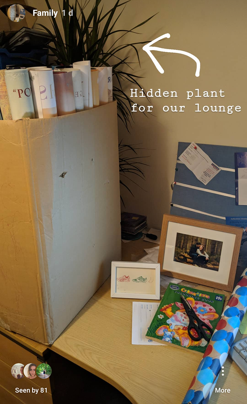 Hidden plant for our anniversary