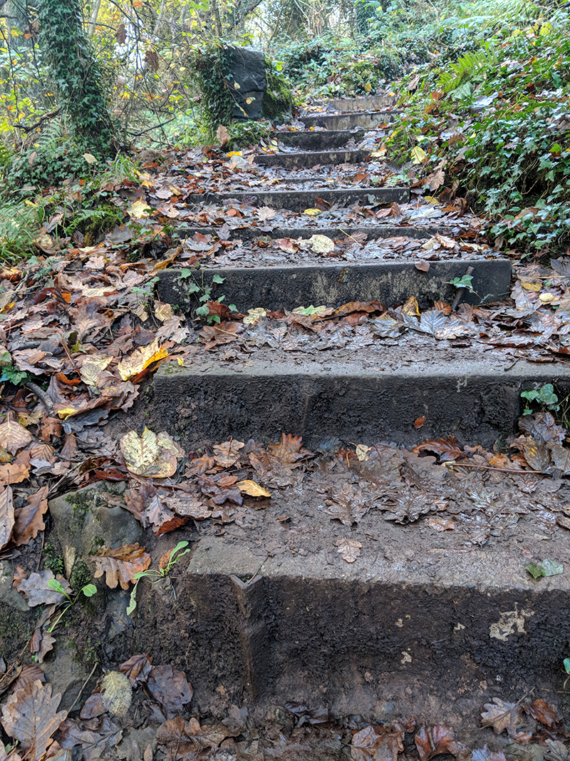 The steps at EnduranceLife Gower marathon